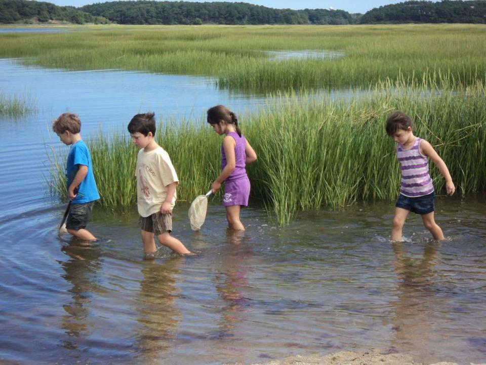 Mass Audubon's Wellfleet Bay Wildlife Sanctuary offers camps and hands-on educational programs for children.
